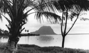 « France Libre d'outre-mer », un poste clandestin sous les cocotiers